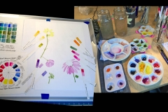 jauneth-skinner-©-6-flowers-watercolor-painting-in-the-studio