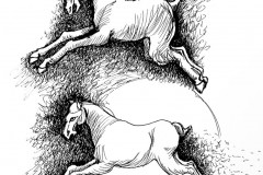 Two T'ang Horses