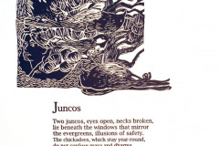 jauneth-skinner-©-1998-lake-songs-william-borden-letterpress-broadside