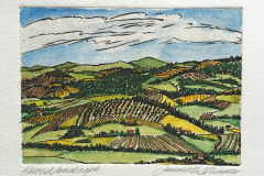 jauneth-skinner-©-harvest-landscape-heliogravure-w-hand-coloring-Umbria-Italy