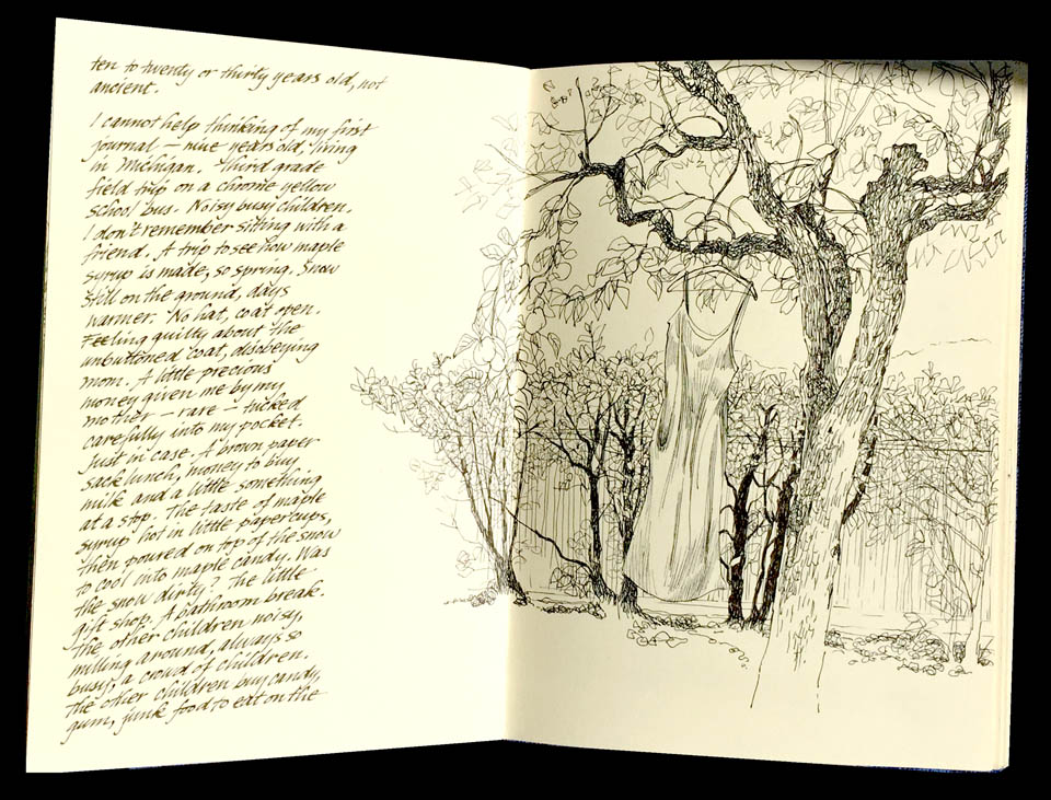 jauneth-skinner-©-giardino-perugia-illustrated-journal-pages-umbria-italy